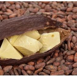 Какао-масло кусковое